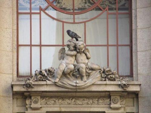 Herein. Cupid + co...