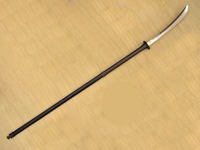 notha NAGINATA... Photo Credit/Thanks:wikia.com