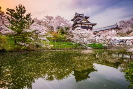 Nara, Japan at Koriyama Castle in the spring season.
