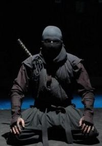 NINJA... MALE SHINOBI OF THE NINPO WAY.