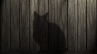 SHADOWY SHINOBI STEALTH... NINJA CAT IN TRAINING... IN THE SHADOWS INDEED.