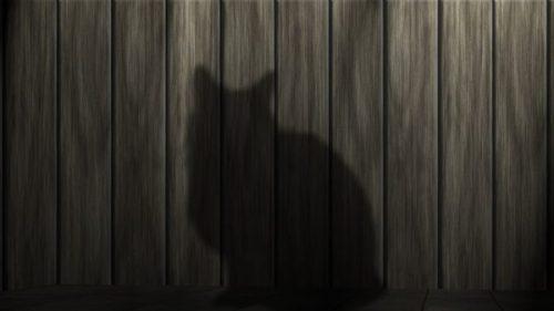 SHADOWY SHINOBI STEALTH... NINJA CAT IN TRAINING... IN THE SHADOWS INDEED.