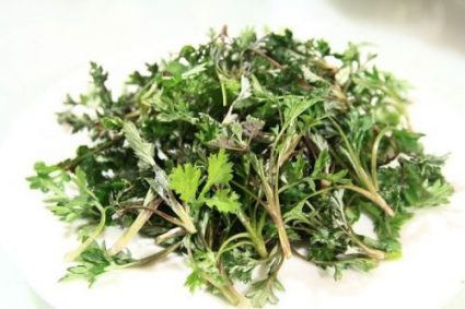WORMWOOD... DETOXICANT EXTRAORDINAIRE IT SEEMS INDEED. PLANT COLOR VARIES WITH TYPE ETC AND SO ON AND SO FORTH.