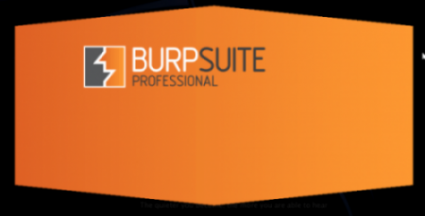 photocredit/thanks:burpsuite