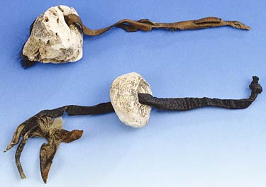 OTZI's... HERBS AND WARMERS... 5,000 YEARS AGO STYLE INDEED. photocredit/thanks:bioweb