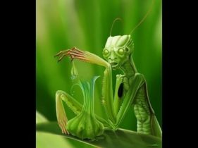 An Insectoid Alien... photocredit/thanks:youtube