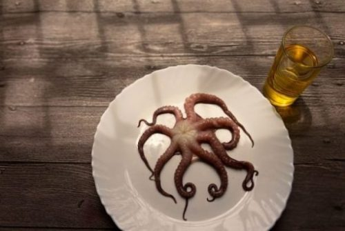 Featured Image Of A Small Outstretched Brownish Octopus On A White Plate With A Glass Of Beer Alongside.