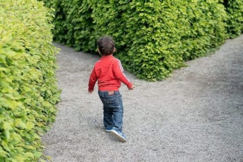 Featured Image Of A Young Boy About To Enter A Maze.