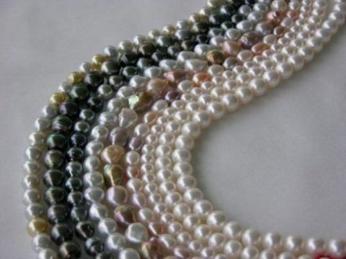 Several Different Colored Pearl Necklaces Lying Curved On White Background.