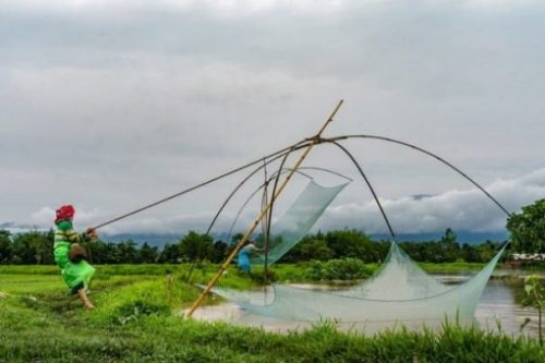 A Small System Of Bamboo Nets Being Manipulated By Two Fishers On The River Shore.