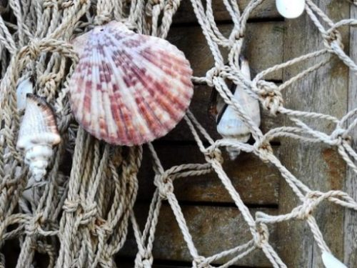 Featured Image Of Several Seashells Hanging On A Net And Wood Post.