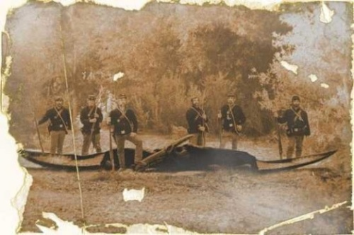 Image Of American Civil War Soldiers Surrounding A Downed Pterodon.