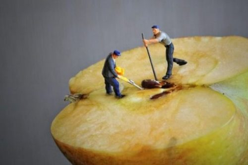 Featured Image Of Two Toy Tiny People Digging Out A Seed From An Halved Apple Core.