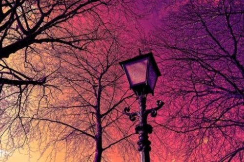 Featured Image Focusing On An Unlit Street Lamp Backgrounded By Trees In A Red Sunset Scene.