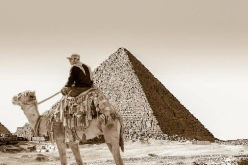 Image Fantasy Themed Of Man Atop Camel Looking At The Great Pyramid.
