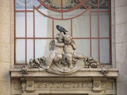 Featured Image Of Two Cherub Angels Statues On A Window Ledge With A Pidgeon On Top Their Heads.