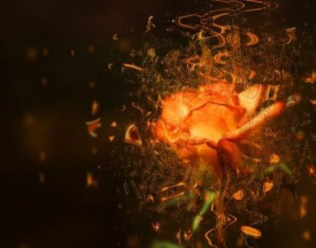 Image Of Fantasy Styled Orange Rose Surrounded By Musical Notes.